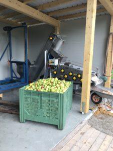 Fruitpers